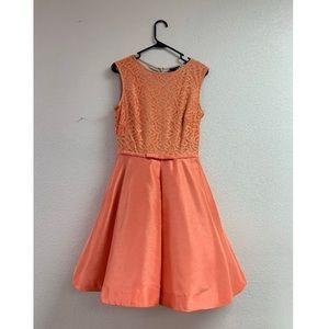 Summer Dress with Zipper back
